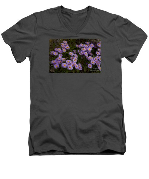 Men's V-Neck T-Shirt featuring the photograph Hoary Tansyaster-signed-#9698 by J L Woody Wooden