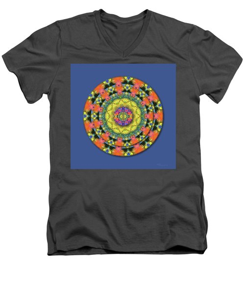 Homage To The Sun Men's V-Neck T-Shirt