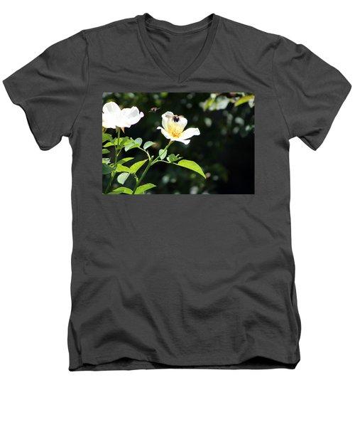 Honey Bees In Flight Over White Rose Men's V-Neck T-Shirt