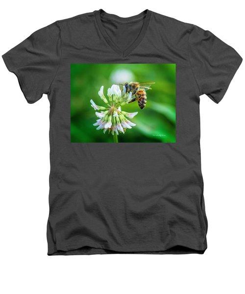 Honeybee On White Clover..... Men's V-Neck T-Shirt