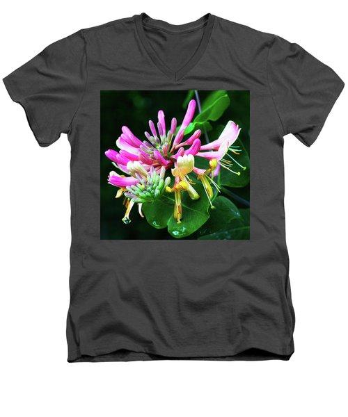 Honeysuckle Bloom Men's V-Neck T-Shirt by Robert FERD Frank