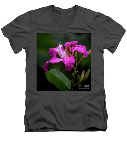 Hong Kong Orchid Men's V-Neck T-Shirt