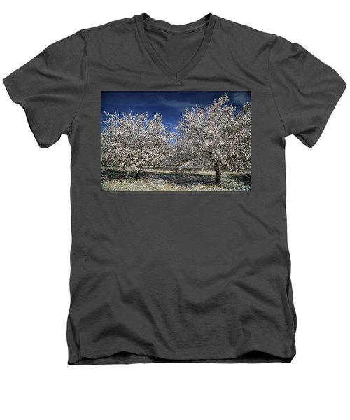 Men's V-Neck T-Shirt featuring the photograph Hopes And Dreams by Laurie Search