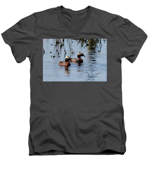 Horned Grebe Couple Men's V-Neck T-Shirt