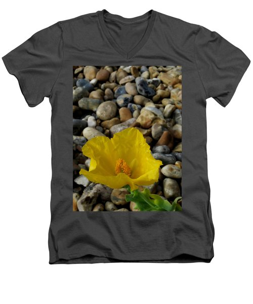Horned Poppy And Pebbles Men's V-Neck T-Shirt by John Topman