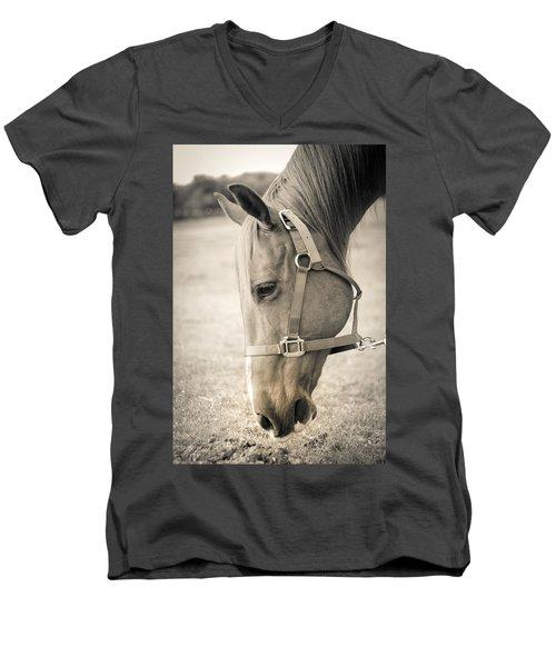 Horse Eating In A Pasture Men's V-Neck T-Shirt