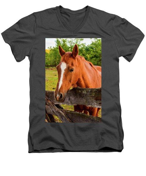 Horse Friends Men's V-Neck T-Shirt