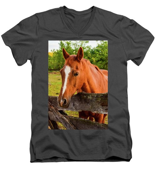 Horse Friends Men's V-Neck T-Shirt