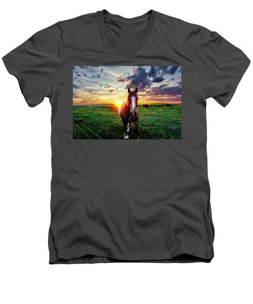 Horses At Sunset Men's V-Neck T-Shirt