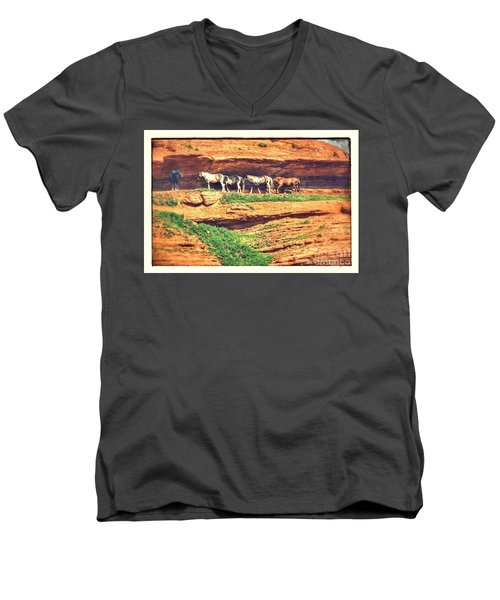 Horses Basking In The Sun Men's V-Neck T-Shirt