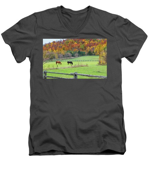 Horses Contentedly Grazing In Fall Pasture Men's V-Neck T-Shirt