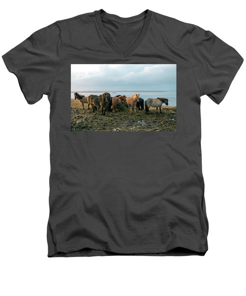 Horses In Iceland Men's V-Neck T-Shirt