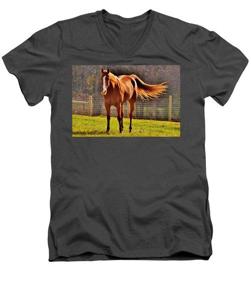 Horse's Tail Men's V-Neck T-Shirt