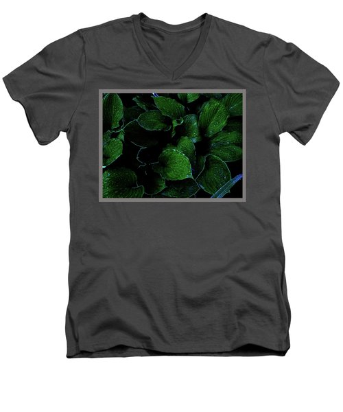 Hostas After The Rain II Men's V-Neck T-Shirt