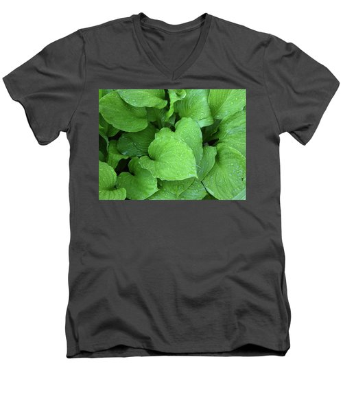 Hostas After The Rain IIi Men's V-Neck T-Shirt