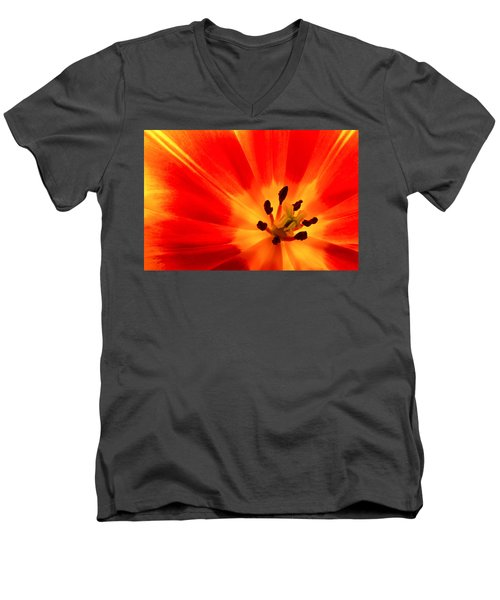 Hot Air Tulip Men's V-Neck T-Shirt
