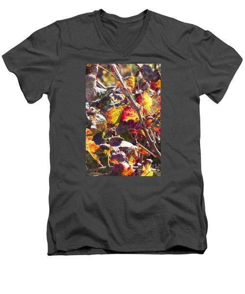 Hot Autumn Colors In The Vineyard 02 Men's V-Neck T-Shirt by Arik Baltinester