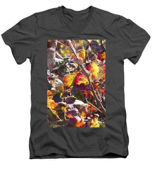 Hot Autumn Colors In The Vineyard 02 Men's V-Neck T-Shirt
