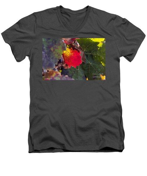 Hot Autumn Colors In The Vineyard Men's V-Neck T-Shirt