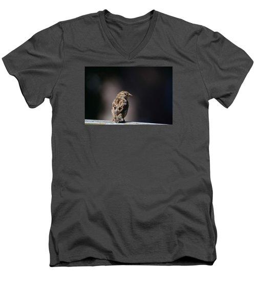 House Sparrow Men's V-Neck T-Shirt by Kathy Eickenberg