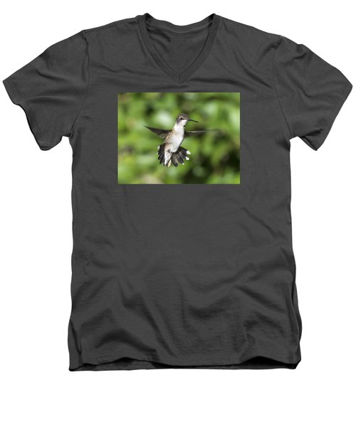 Hovering Hummer Men's V-Neck T-Shirt