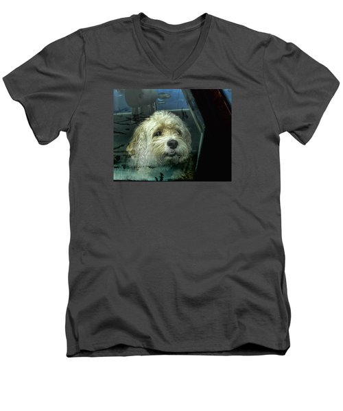 How Much Is That Doggie In The Window Men's V-Neck T-Shirt