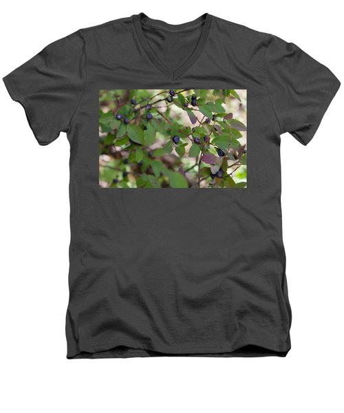 Men's V-Neck T-Shirt featuring the photograph Huckleberries by Fran Riley