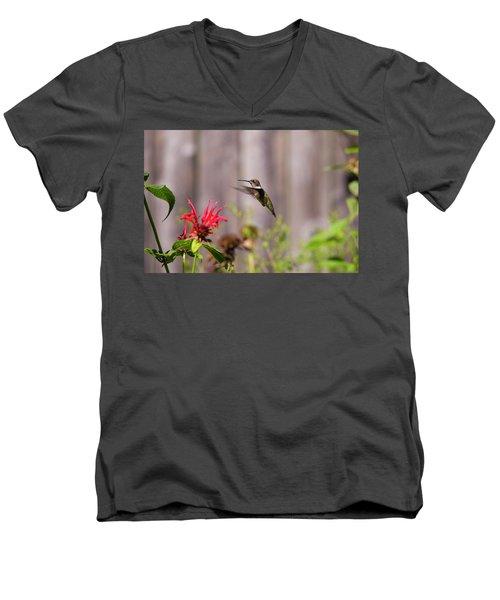 Humming Bird Hovering Men's V-Neck T-Shirt by David Stasiak