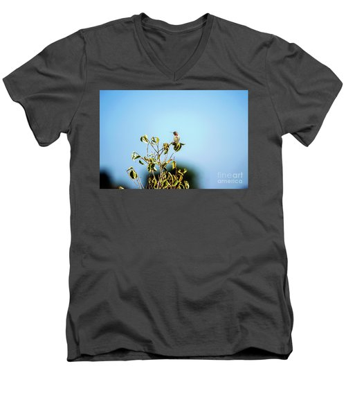 Men's V-Neck T-Shirt featuring the photograph Humming Bird On A Branch by Micah May