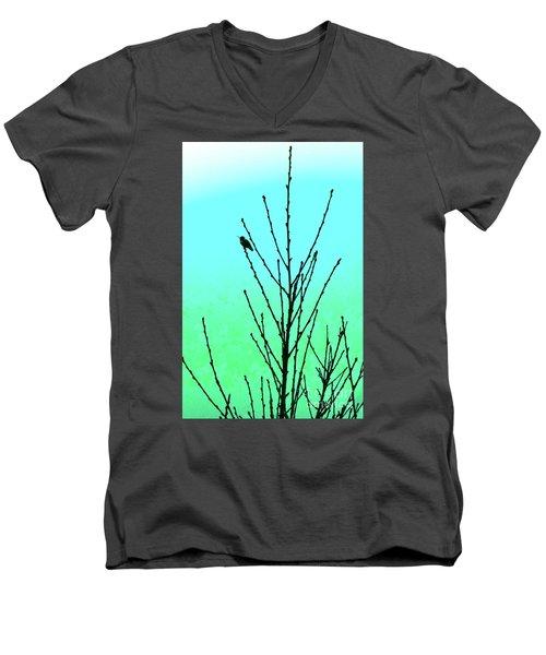 Hummingbird After Rain Men's V-Neck T-Shirt