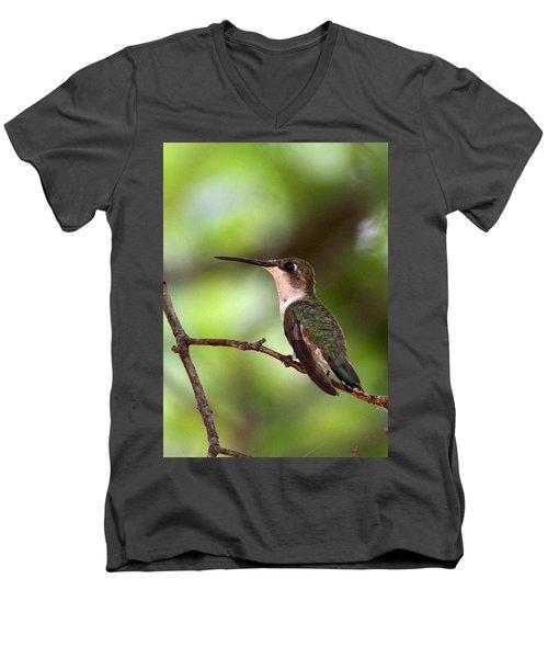 Hummingbird - Afternoon Ruby Men's V-Neck T-Shirt by Travis Truelove