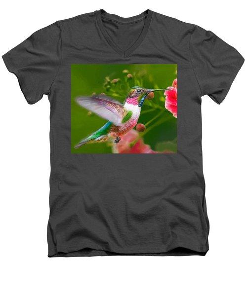 Hummingbird And Flower Painting Men's V-Neck T-Shirt