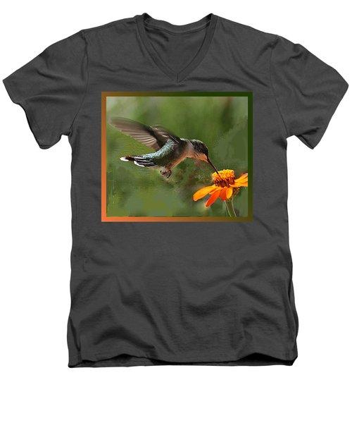 Hummingbird Art Men's V-Neck T-Shirt