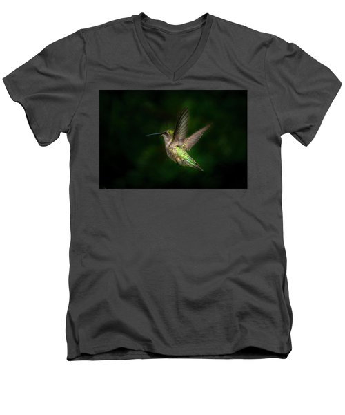 Hummingbird B Men's V-Neck T-Shirt