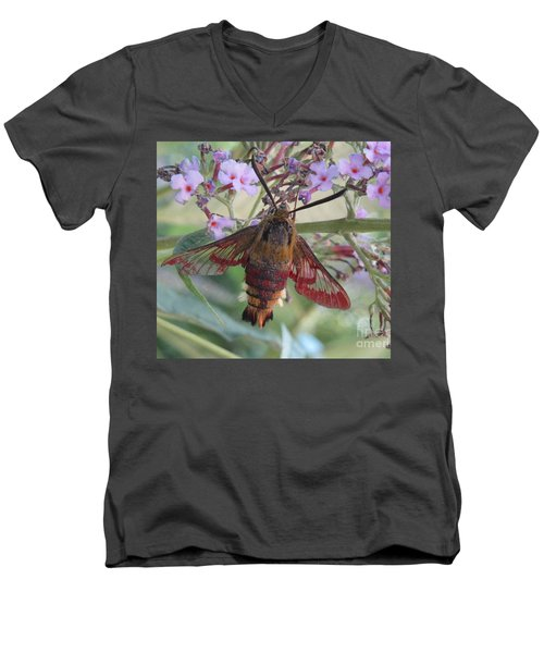 Hummingbird Butterfly Men's V-Neck T-Shirt by Jeepee Aero