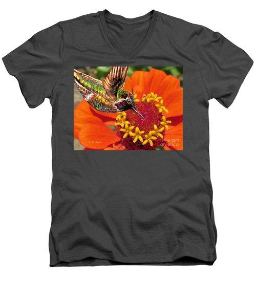 Hummingbird Delight Men's V-Neck T-Shirt