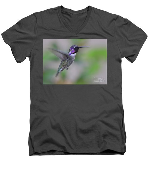 Hummingbird Flight Men's V-Neck T-Shirt