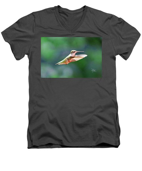 Hummingbird Flying Men's V-Neck T-Shirt