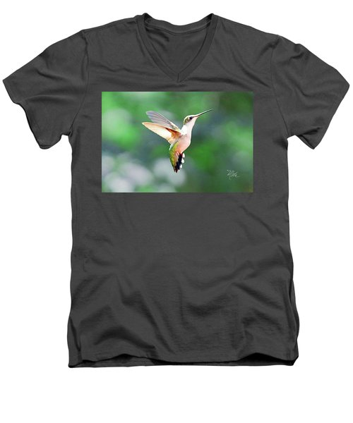 Hummingbird Hovering Men's V-Neck T-Shirt