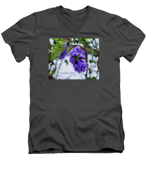 Men's V-Neck T-Shirt featuring the photograph Hummingbird In A Jacaranda Tree by John  Kolenberg