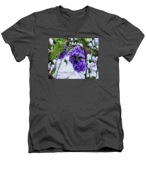 Hummingbird In A Jacaranda Tree Men's V-Neck T-Shirt