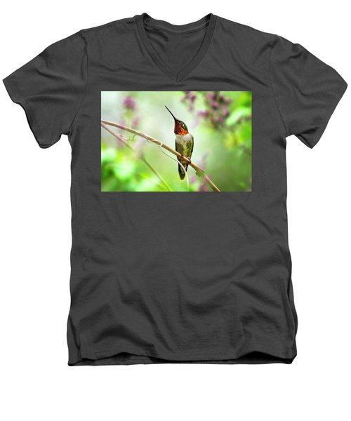 Hummingbird Looking For Love Men's V-Neck T-Shirt