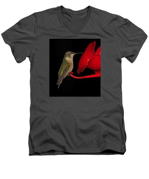 Men's V-Neck T-Shirt featuring the photograph Hummingbird Nightcap 2 by Phyllis Beiser