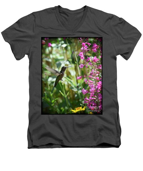 Hummingbird On Perry's Penstemon Men's V-Neck T-Shirt