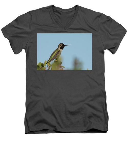 Hummingbird On Watch Men's V-Neck T-Shirt