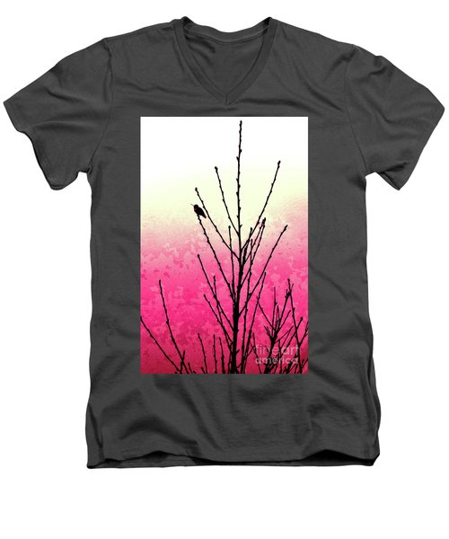 Hummingbird Valentine Men's V-Neck T-Shirt