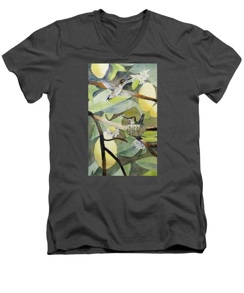 Hummingbirds And Lemons Men's V-Neck T-Shirt