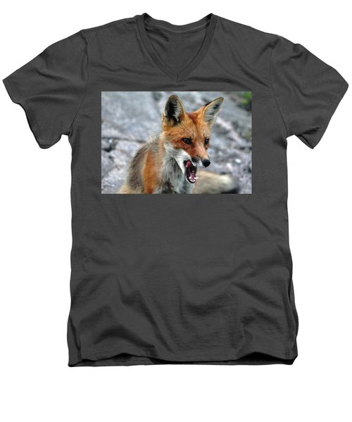 Men's V-Neck T-Shirt featuring the photograph Hungry Red Fox Portrait by Debbie Oppermann