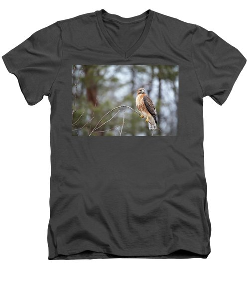 Hybrid Branch Men's V-Neck T-Shirt