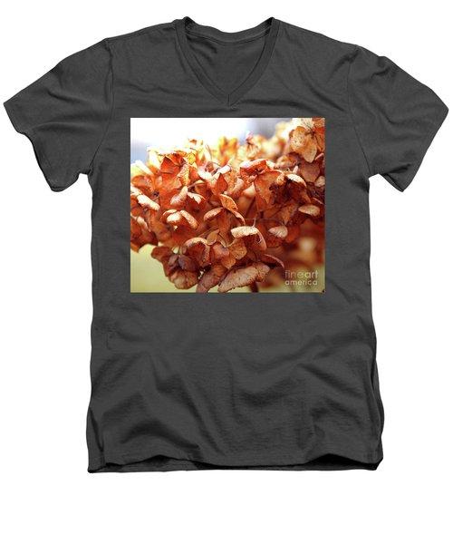 Hydrangea In Sunlight Men's V-Neck T-Shirt
